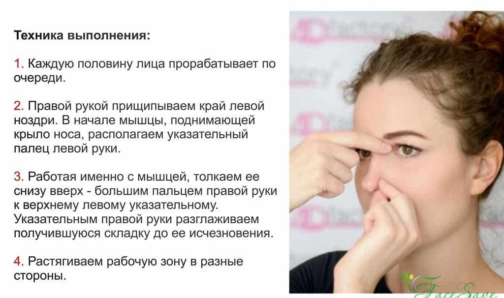 нос иверхняя губа