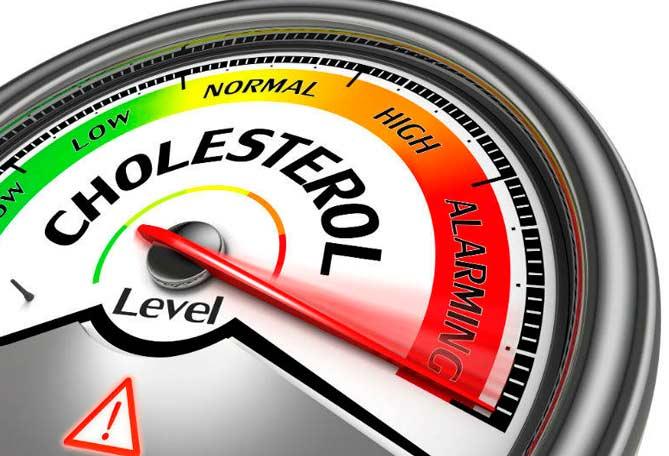 Снижает уровень холестерина