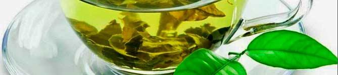 Лед из зеленого чая