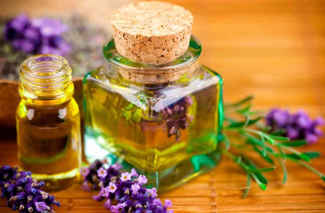Польза масла лаванды для кожи