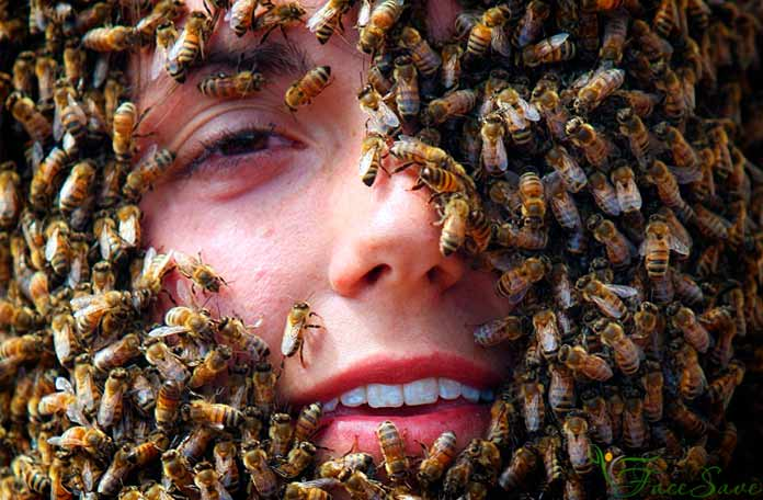 Пчёлы для лица