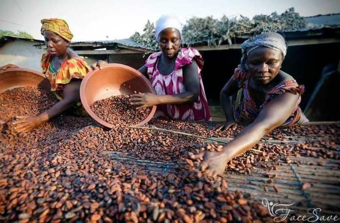 Производство какао